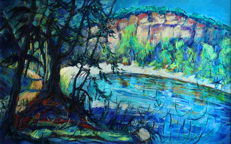 54 Wild River Gorge (Acrylic on board) (SOLD)