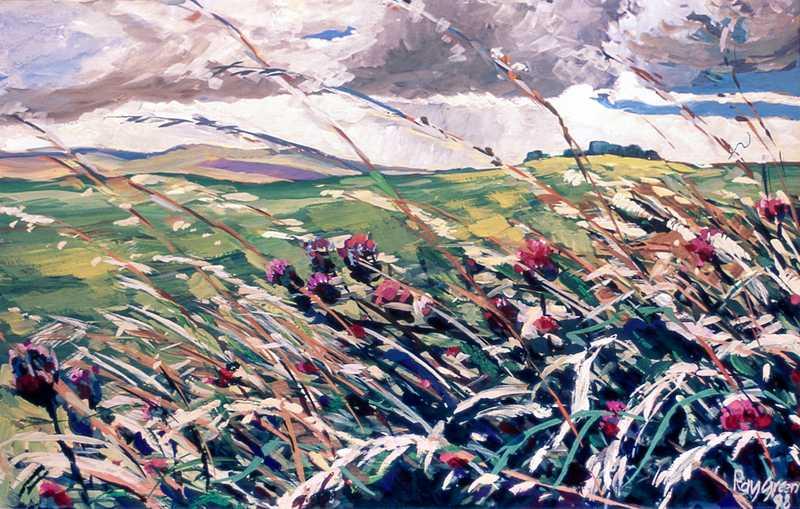 55. Wild moorland